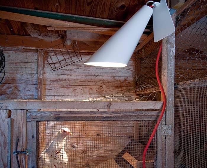 Licht und Elektro von Heimat-Werk